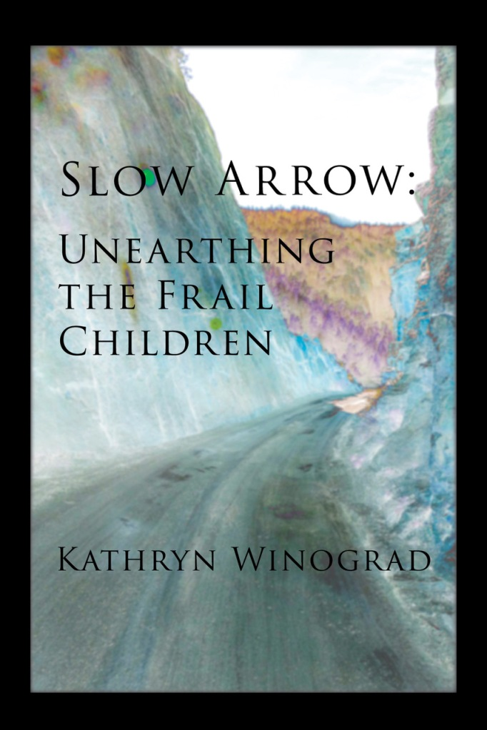 bookcover for slow arrow