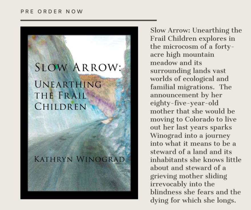cover of slow arrow with description of book