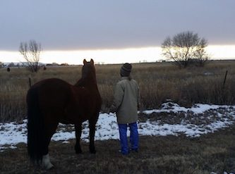 Carol and horse